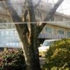 新別府病院