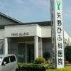 矢野ひふ科医院