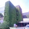 日本歯科大学医科病院
