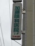 加藤眼科医院